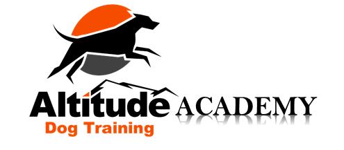 Altitude Academy pic